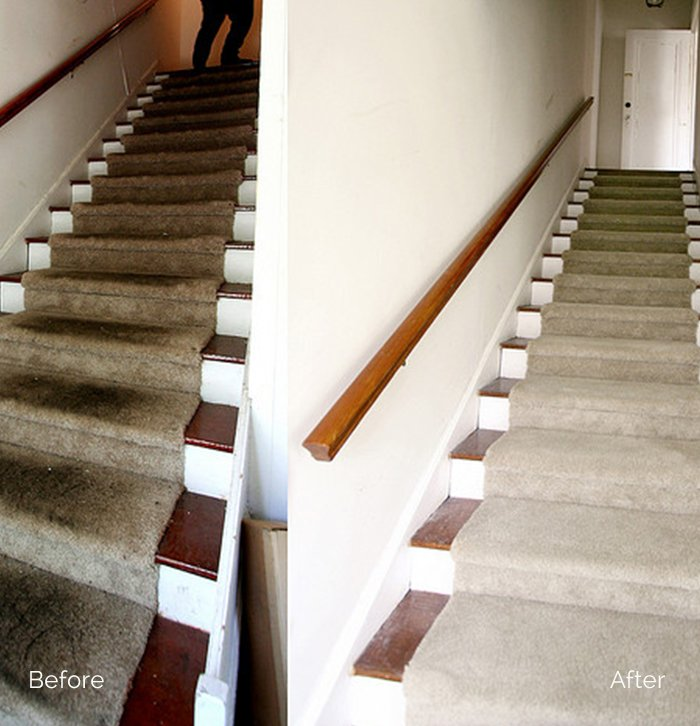 Carpet cleaning 10019 Rug Cleaners