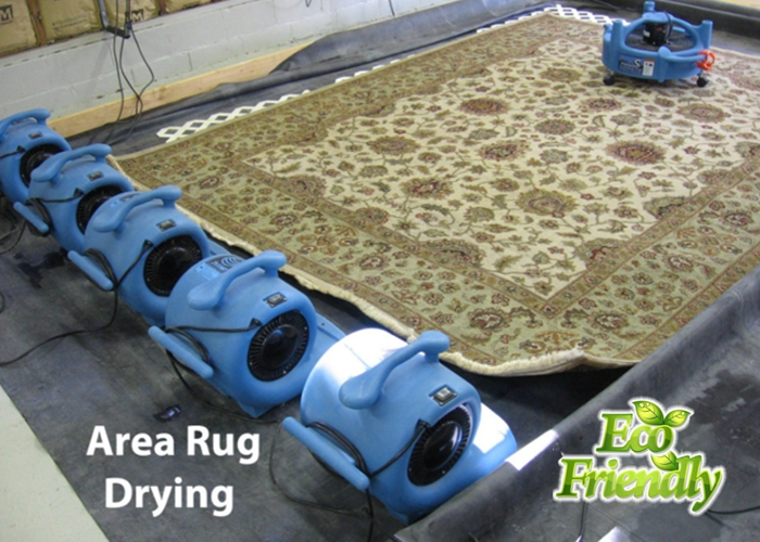 area rug cleaning services Jersey City