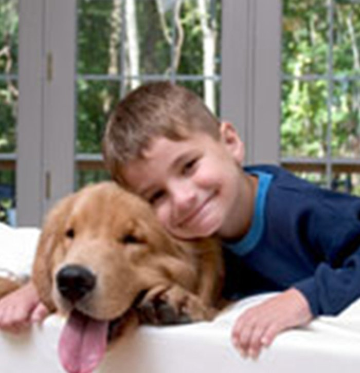 Pet Stains & Odor Removal Services in New York
